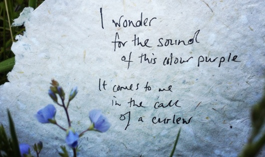 a poem in the flowers