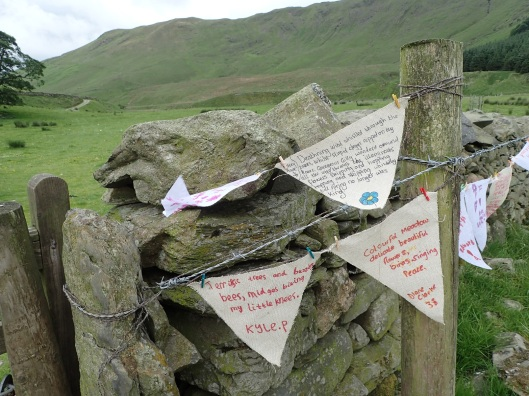 poetry bunting High Borrowdale meadow