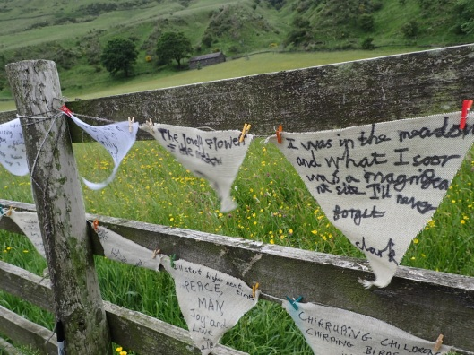 poetry bunting High Borrowdale meadow Cumbria