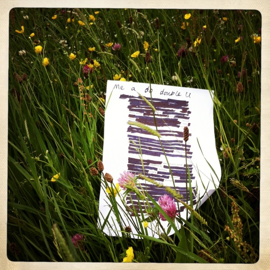 'Found Poetry' in the meadow