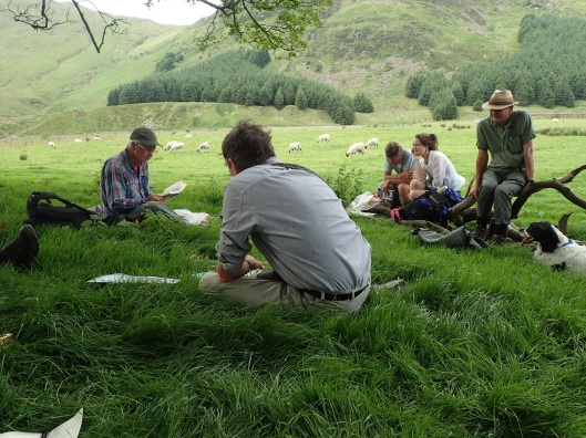 poetry day in High Borrowdale meadow