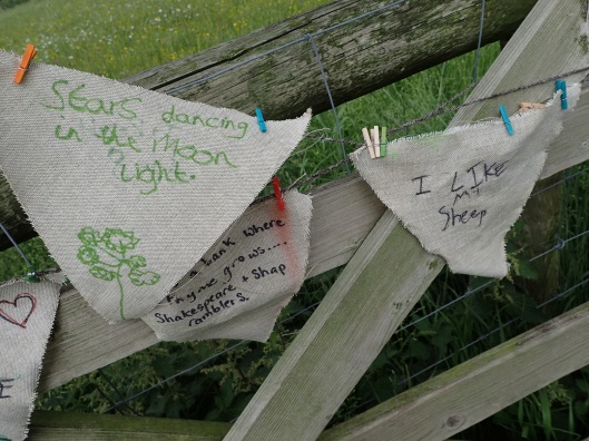 high borrowdale bunting